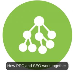 How PPC and SEO work together